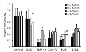 Globale Veränderung TDP-43-abhängiger microRNAs bei der ALS